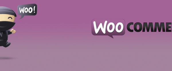 Woocommerce Cart Icon With Count